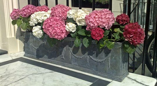 Planters & Urns Collection - Trellis & Trugs