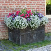 planters-lead-grid-planter-closeup