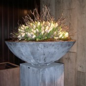 planters-lead-shallow-bowl